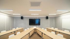 GreenTomato Meeting room MXA910