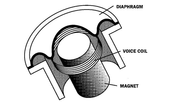 Dynamic Mic Capsule Illustration